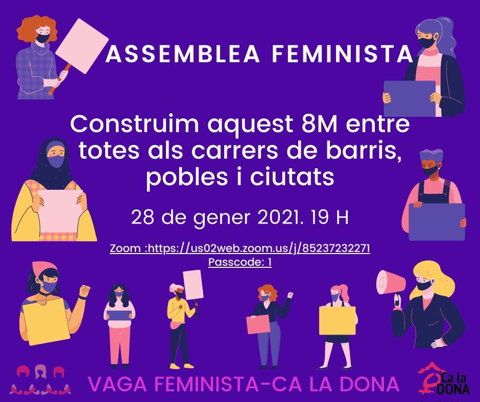 Assemblea 8M. 28 de gener 2021